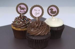 LC-slider-babygirlshower-cupcakes